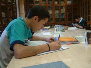 Grupos de trabajo en colegio safa sigüenza