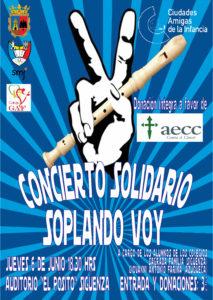 Cartel Concierto Solidario II
