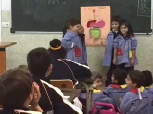 Compartiendo conocimientos: Infantil y Primaria
