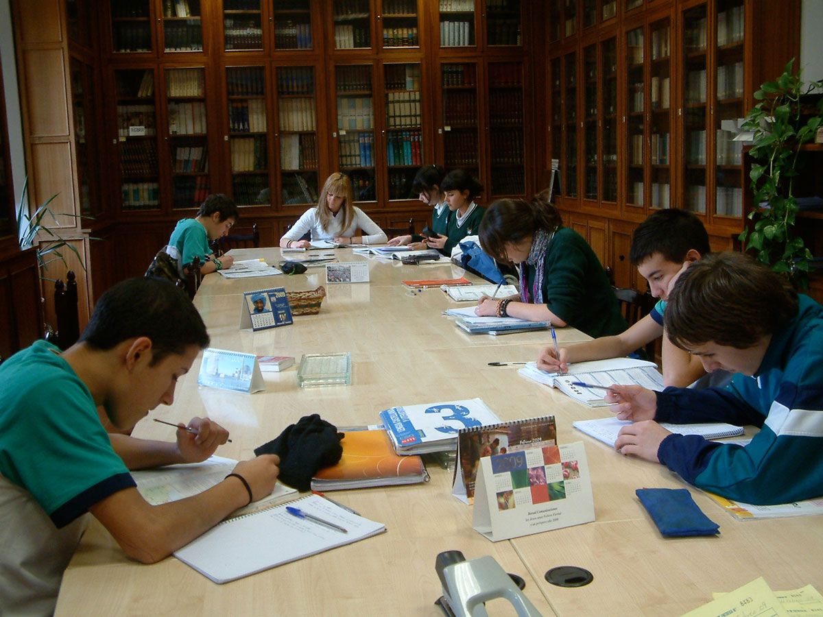 biblioteca del colegio safa sigüenza